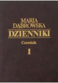 Dąbrowska dzienniki Tom I