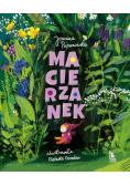 Macierzanek