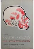 Anatomia głowy dla stomatologów