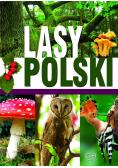 Lasy Polski