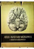 Atlas anatomii mózgowia i rdzenia kręgowego