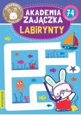 Akademia zajaczka Labirynty