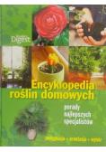 Encyklopedia roślin domowych