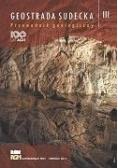 Geostrada sudecka. Przewodnik geologiczny T.3