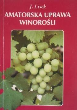 Amatorska uprawa winorośli
