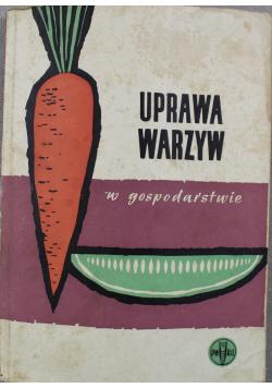 Uprawa warzyw w gospodarstwie