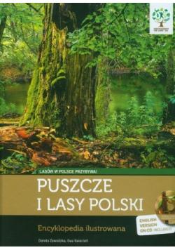 Puszcze i lasy Polski