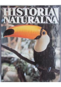 Historia Naturalna Ptaki Ssaki