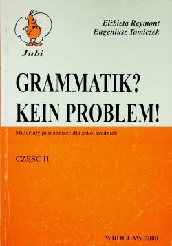 Grammatik Kein Problem Część II