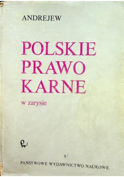 Polskie prawo karne w zarysie