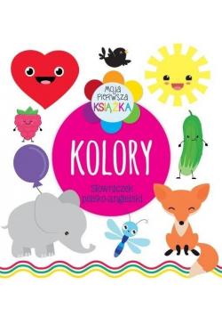 Moja pierwsza książka Kolory. Słowniczek pol-ang
