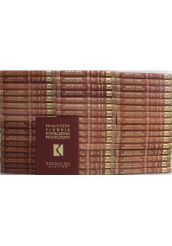 Praktyczny słownik współczesnej polszczyzny 50 tomów