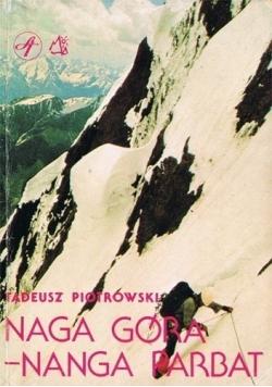Naga góra Nanga Parbat
