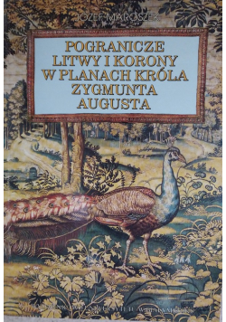 Pogranicze Litwy i Korony w planach króla Zygmunta Augusta