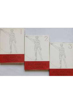 Atlas anatomii człowieka Tom od I do III