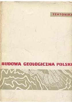 Budowa geologiczna Polski Tom IV część 3
