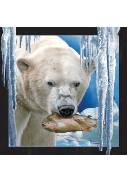 Pocztówka 3D Niedźwiedź polarny z rybą