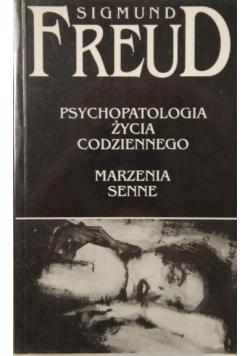 Psychologia życia codziennego  Marzenia senne