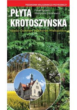 Płyta Krotoszyńska. Między Gostyniem a Ostrowem...
