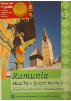 Rumunia Mozaika w żywych kolorach