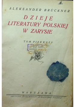 Dzieje literatury polskiej w zarysie tom I 1924 r.