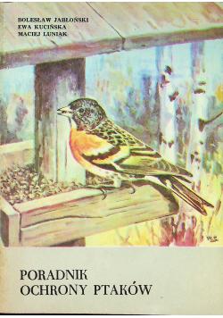 Poradnik ochrony ptaków