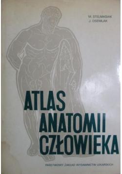 Atlas Anatomii Człowieka Tom 2