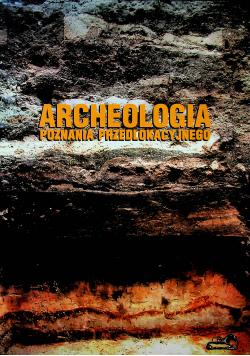 Archeologia Poznania Przedlokacyjnego