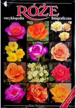 Róże Encyklopedia fotograficzna