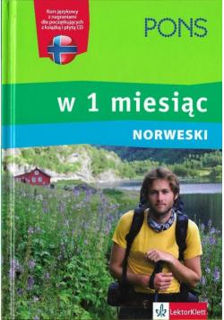 Pons Norweski w 1 miesiąc