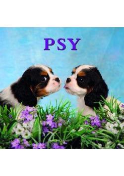 Psy w. 2012 BR