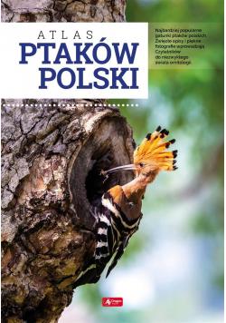 Atlas ptaków Polski TW