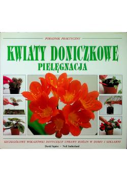 Kwiaty doniczkowe Pielęgnacja Poradnik praktyczny