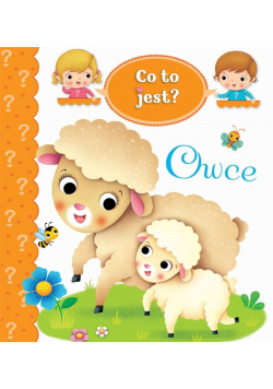 Co to jest? Owce