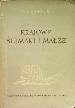 Krajowe ślimaki i małże