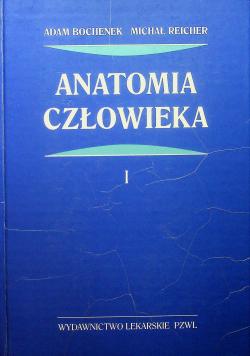Anatomia człowieka tom 1