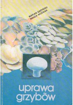 Uprawa grzybów