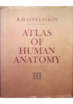 Atlas of human anatomy III