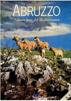 Abruzzo Natura forte del Mediterraneo