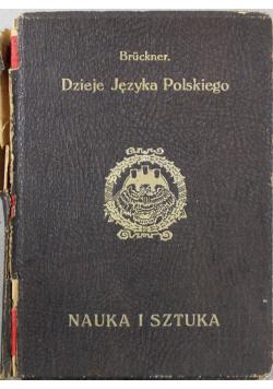 Dzieje Języka Polskiego Nauka i sztuka ok 1930 r.