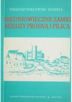 Średniowieczne zamki między prosną i pilicą