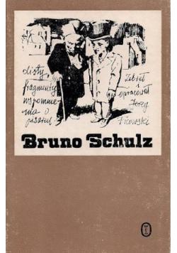 Bruno Schulz Listy fragmenty Wspomnienia o pisarzu