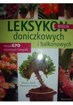 Leksykon roślin doniczkowych i balkonowych