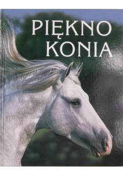 Piękno konia