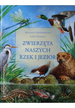 Zwierzęta naszych rzek i jezior