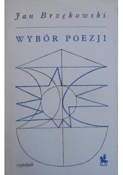 Brzękowski Wybór poezji