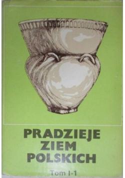 Pradzieje ziem polskich Tom I