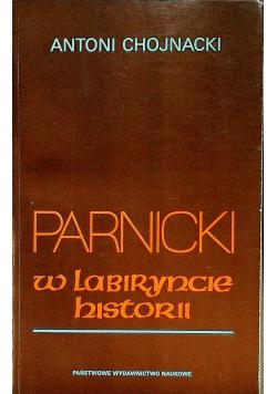 Parnicki W labiryncie historii