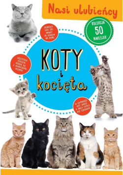 Kolekcja 50 naklejek. Koty i kocięta