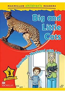 Children's: Big and Little Cats 3 Grandad's...